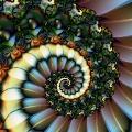 Spirale 30