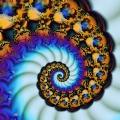 Spirale 40