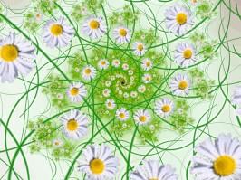 Eine Blumenspirale